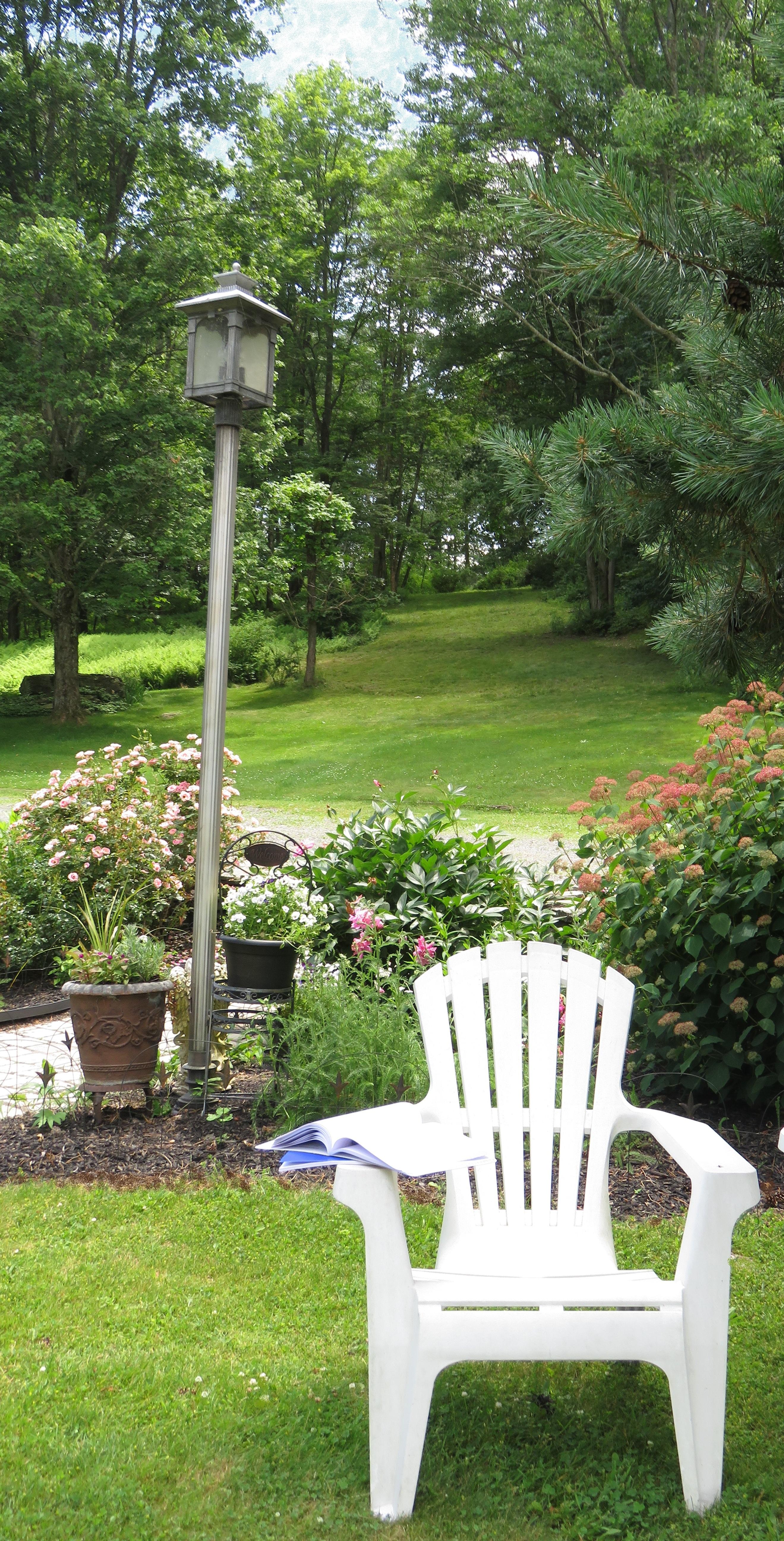 June 18, 2017-A Garden 052solo