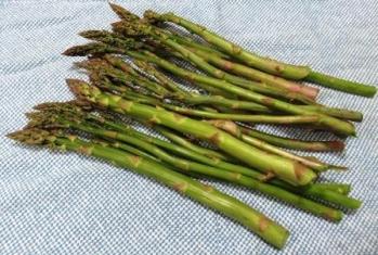 asparagus 002