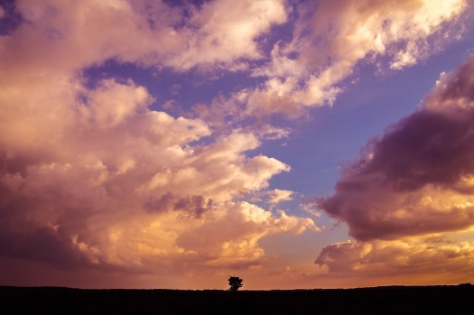 Dramatic photo of imposing clouds at sunset over lonely landscape