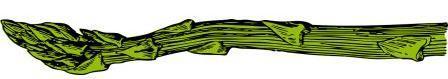 asparagus-32916_1280illus2