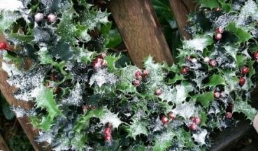 christmas-992827_1280 wreath