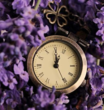 Old time clock in a field of lavendar