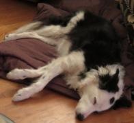 Bess Naps (2)