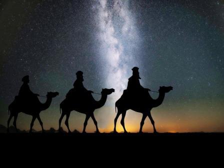 camels-1150075_1280