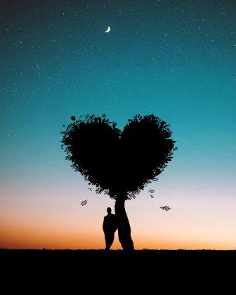 Photo of man leaning against heart shaped tree amidst starry sky
