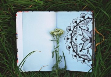 Open book with mandala and yarrow standing in grass