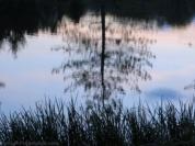 Textures-Water and Sky WMC