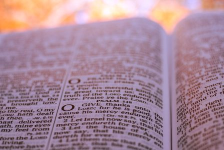 Biblical text about giving thanks