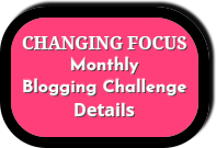 Changing Focus Blogging Challenge Details