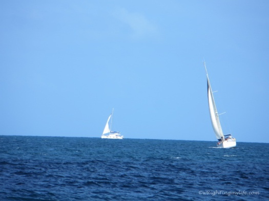 Two sailboats in the ocean