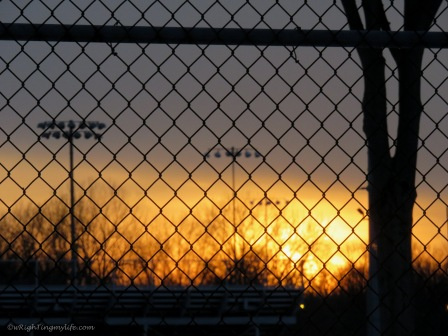 sunset behind wire fence