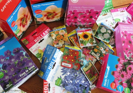 Various empty packages of flower bulbs and seeds