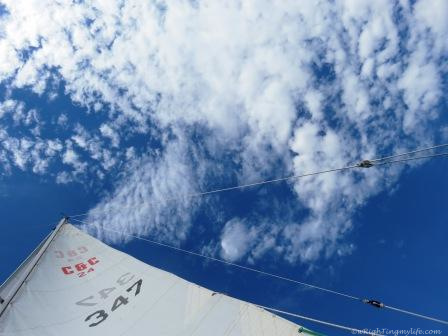 Upward view of sail and clouds