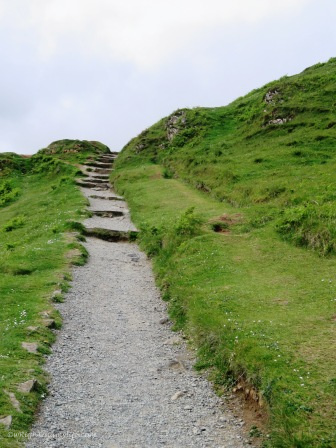 Pebbled pathway up or down a green mountainside