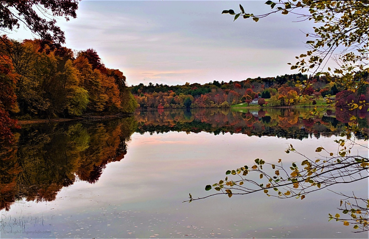autumn landscape of burgundy, terracotta, orange, green, yellow trees reflected in water