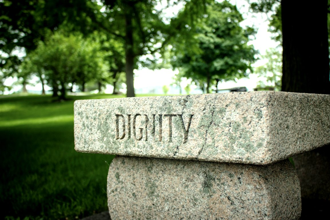 DIGNITY word engraved in stone amidst lush green backdrop